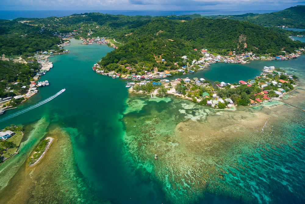 Oak Ridge  Santos Guardiola Roatan