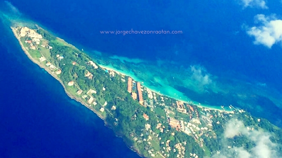 Buy Roatan Island Real Estate